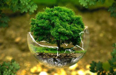 Lagoa 2020 – Cidade Sustentável